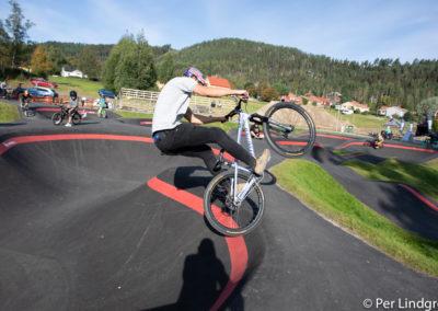 Wheellove_dag2-5558